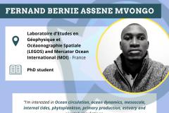 Fernand Bernie Assene Mvongo