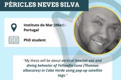 Péricles Neves Silva
